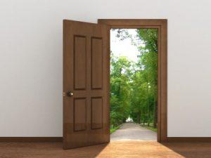 אילו דלתות מתאימות לעיצוב הבית?